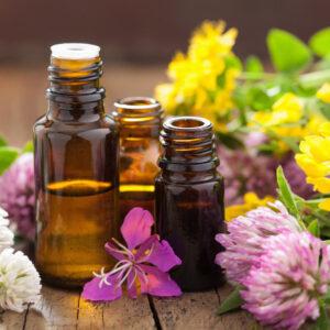 Ambientadores, fragancias y perfumes